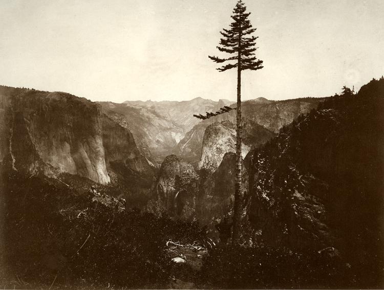 C._L._Weed__Mariposa_Trail_ca._1865.jpg