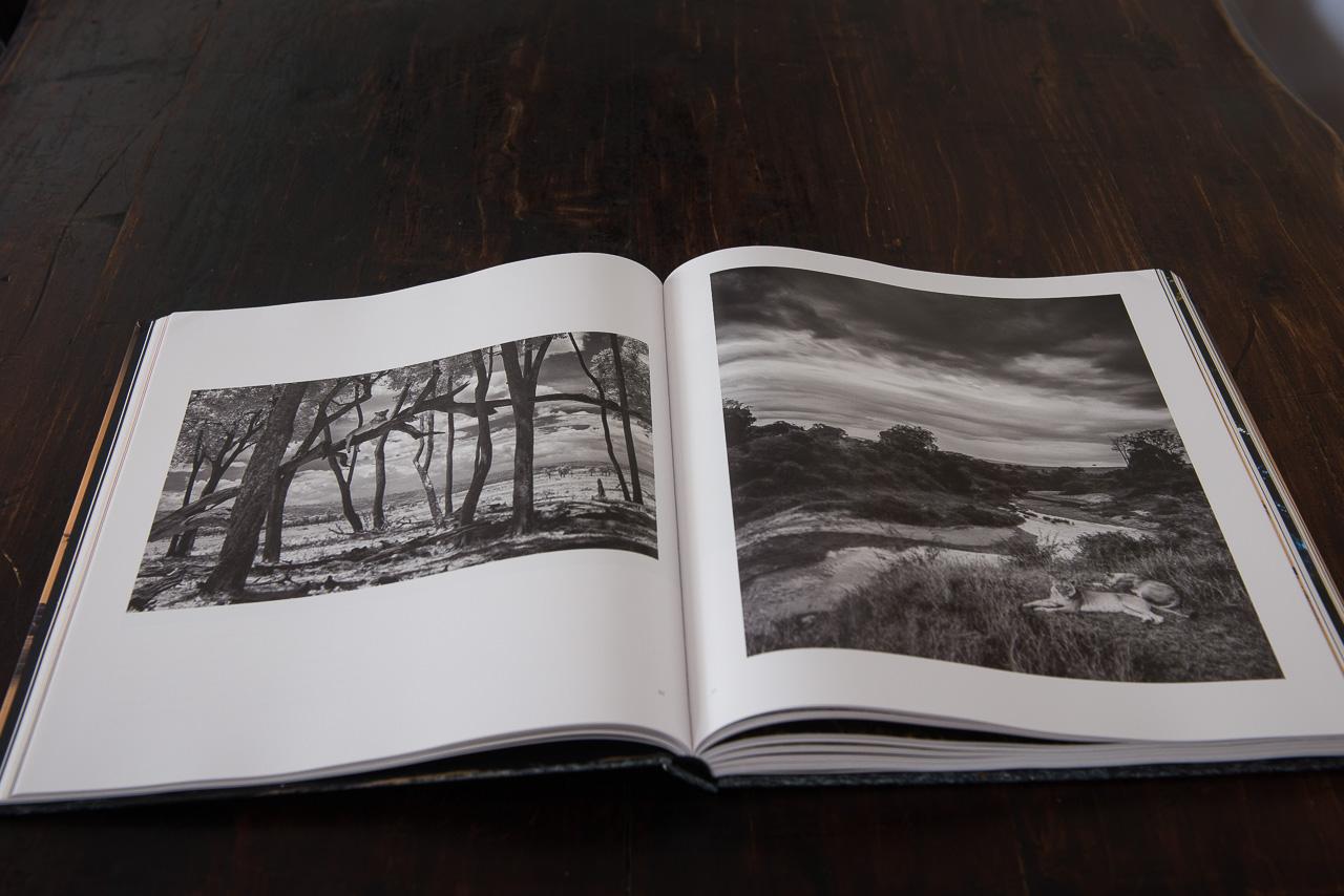 light-and-dust-african-wildlife-book-8938.jpg