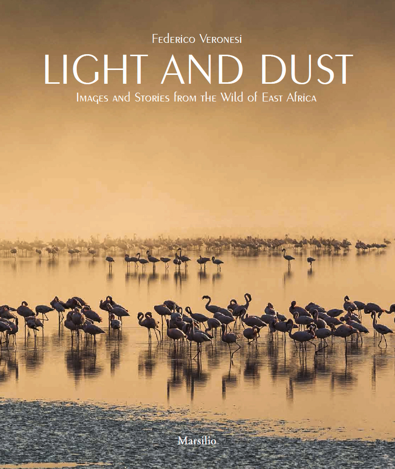 light-and-dust-african-wildlife-book-cover_Front.jpg